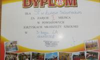 zawody-szkolne-2012006.JPG